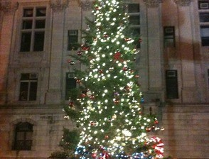 Paterson Christmas Tree