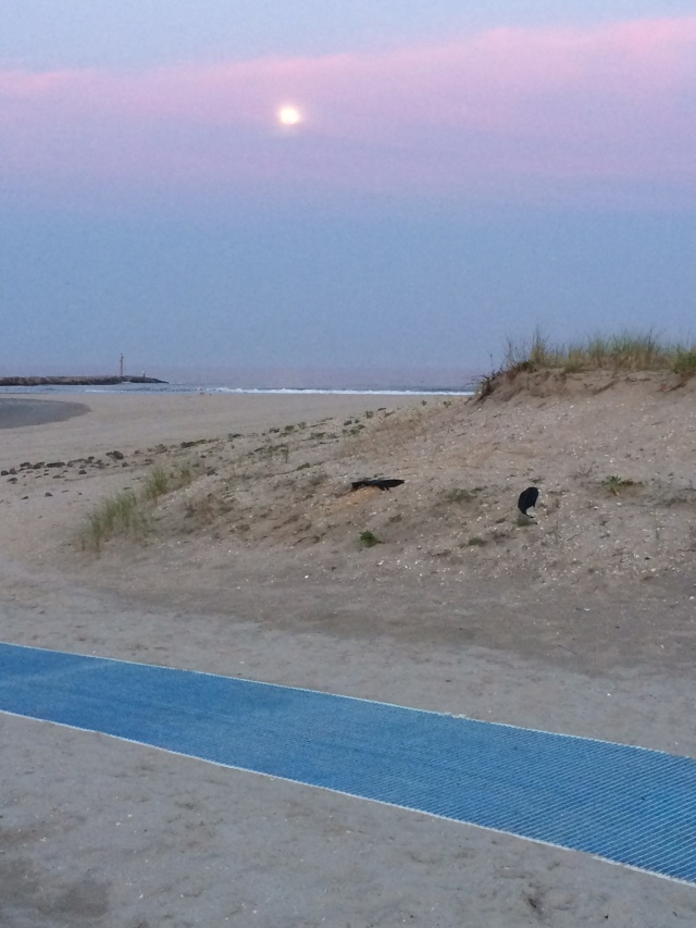 the moon rising over Avalon's 8th Street beach.