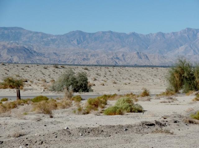 Sonoran Desert, southeastern California