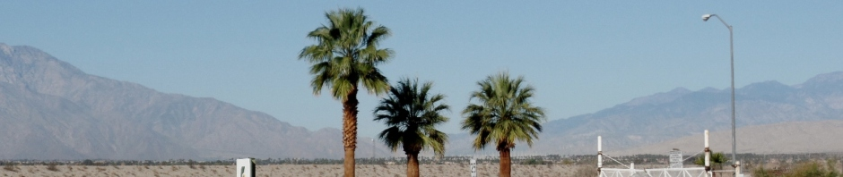 The sonoran Desert in southeastern California