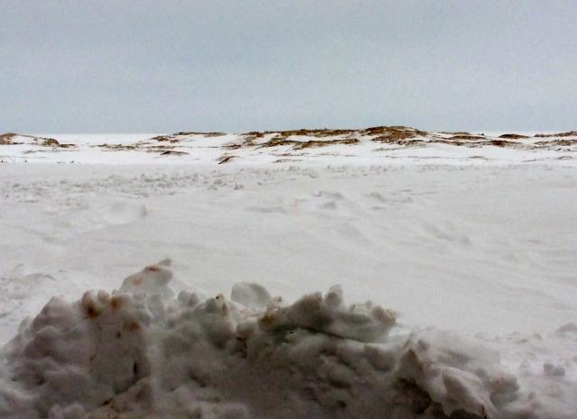 Presque Isle State Park beach