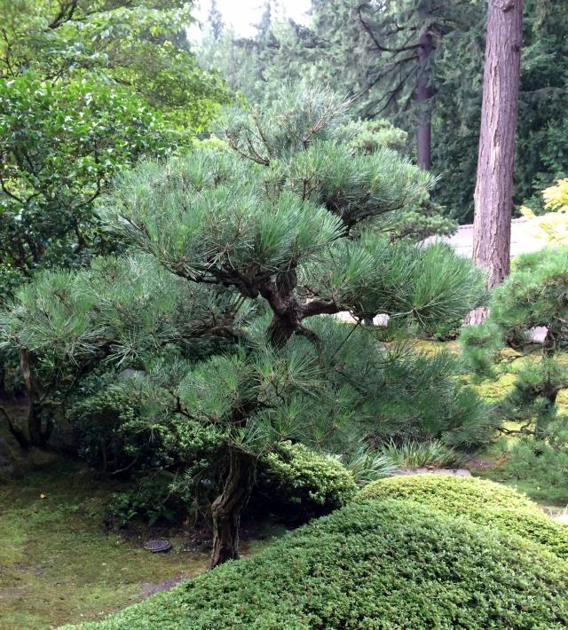 Portland Botanncal Gardens