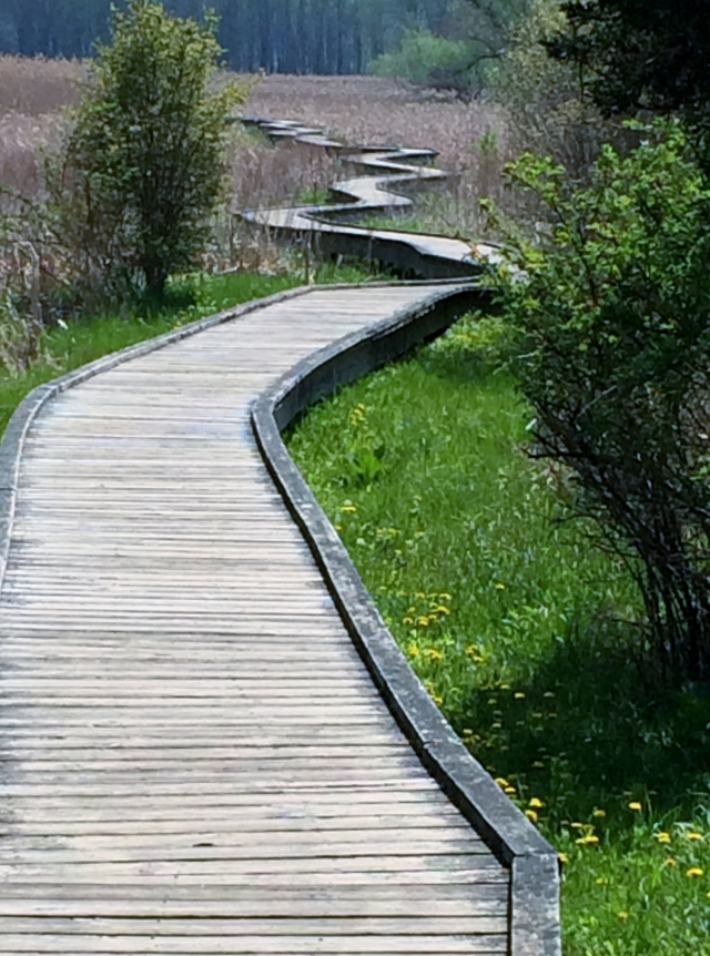 Pochuk boardwalk