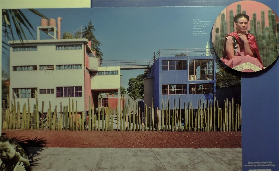 Kahlo Museum