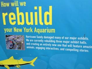 Rebuilding the aquarium