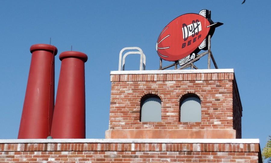 Roof of Duff bar