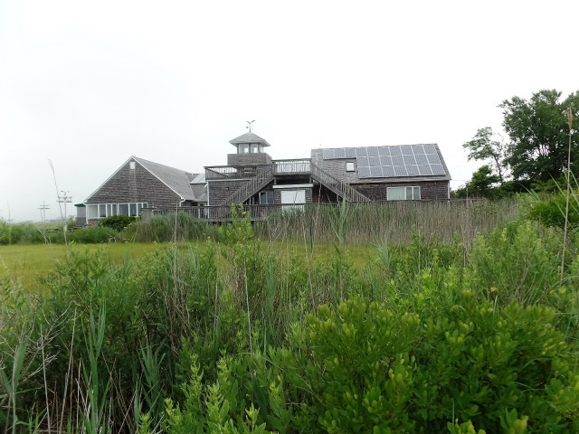 Wetlands Institute