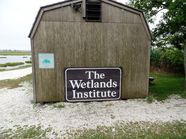 The Wetlands Institute
