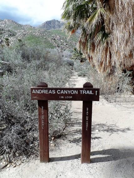 Andreas Canyon trail sign