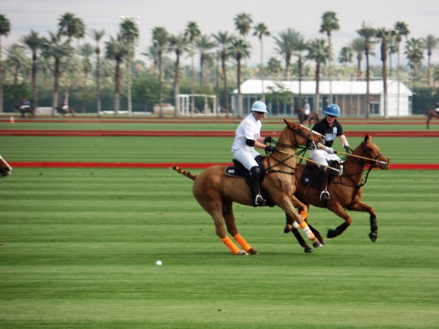 the polo grounds at Eldorado Polo Club