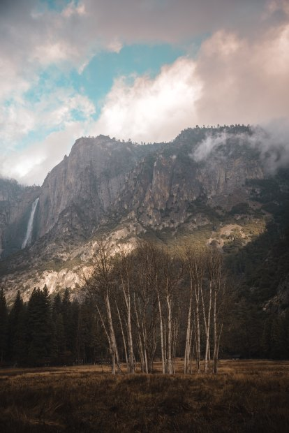 Homer Yosemite image