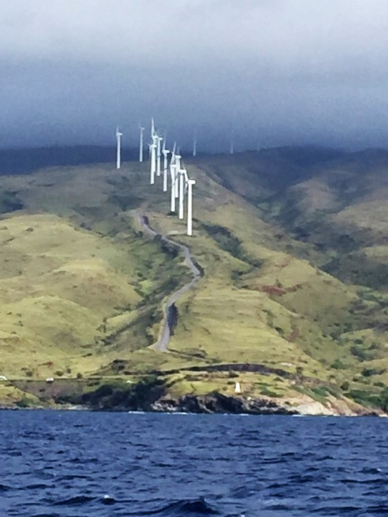 Windmills in Maui