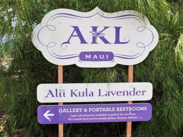 lavender farm sign