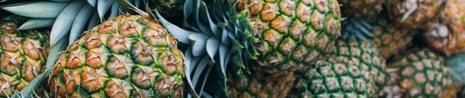 Pineapples - Maria Fernanda Gonzalez