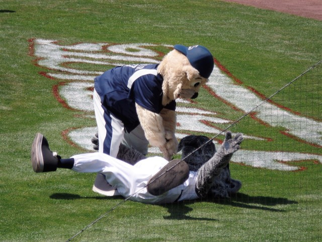 Mascots wrestle at TD Bank Ballpark