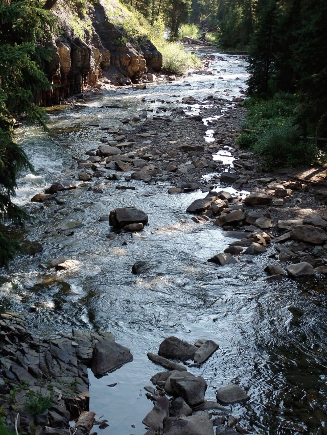 Gallatin River in Gallatin National Forest