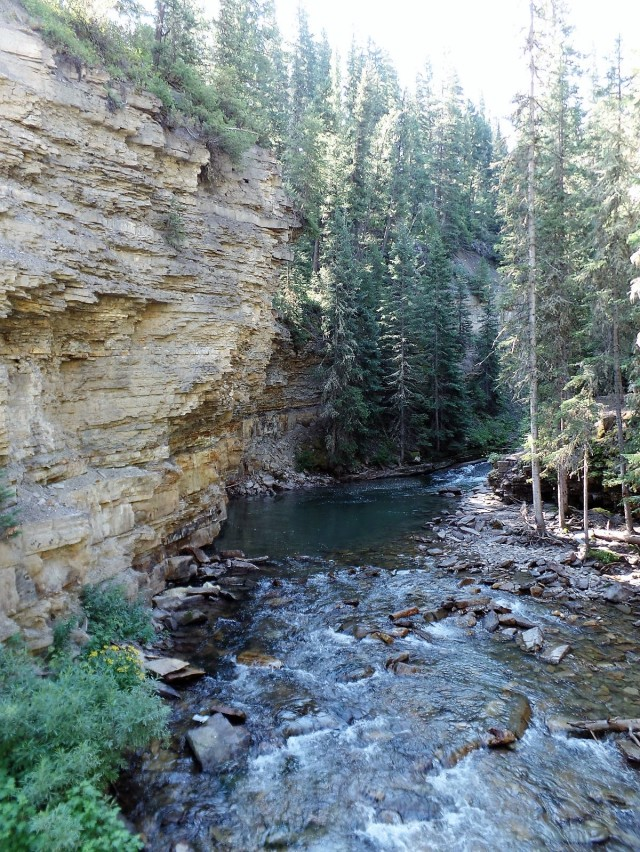 Gallatin River on Ousel Falls Trail