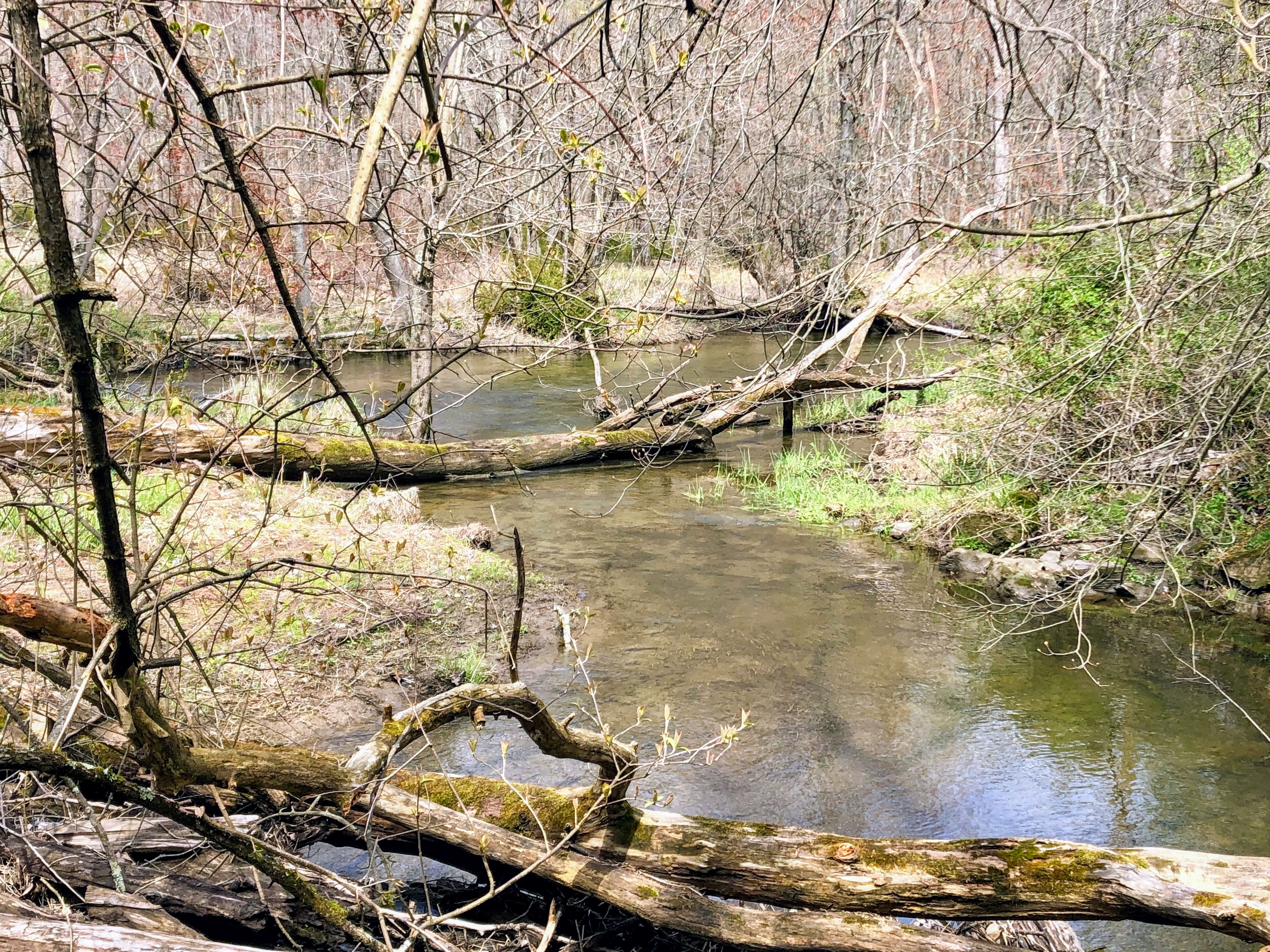 Goosepond Mountain State Park
