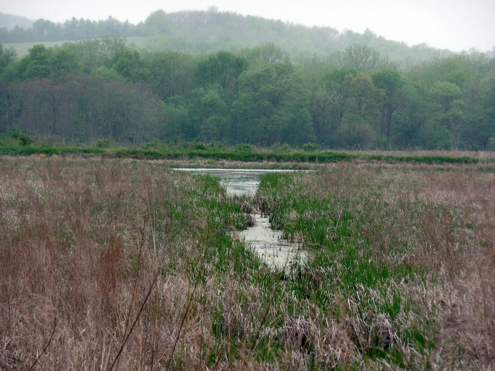 Wallkill River National Wildlife Refuge