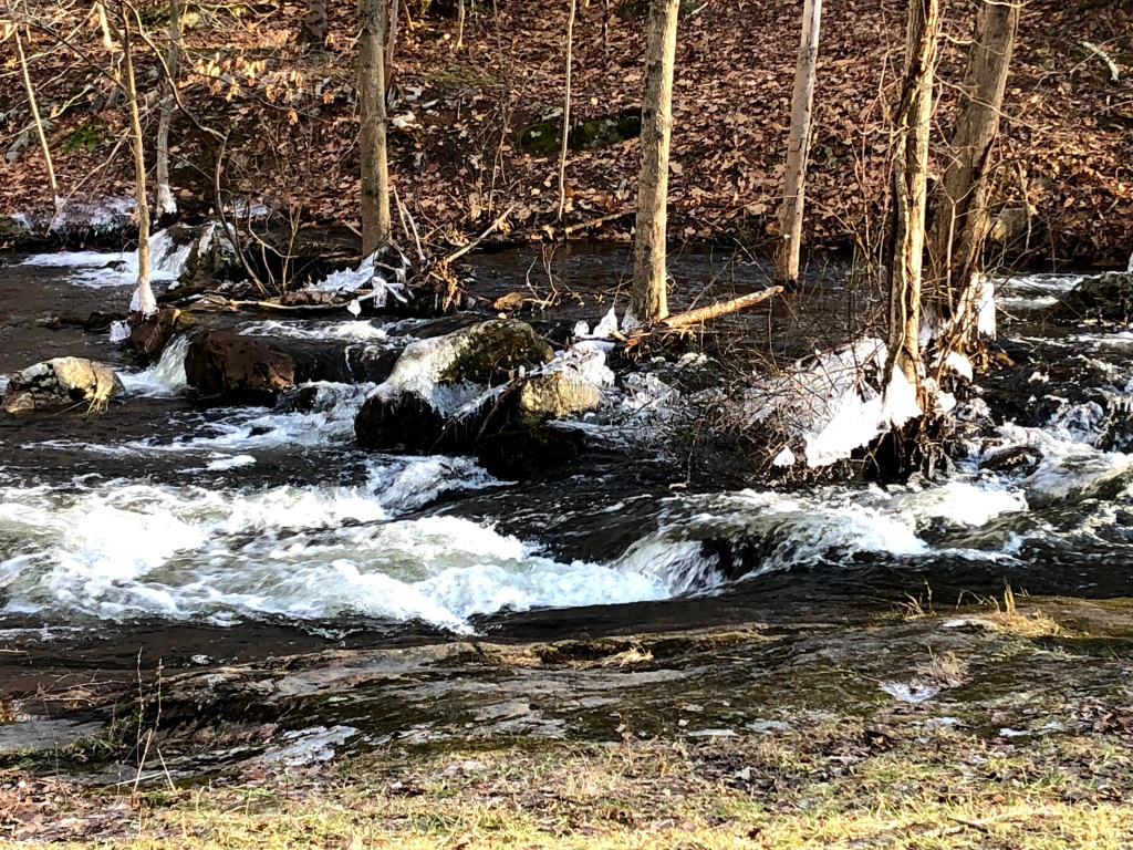 Wawayanda State Park stream