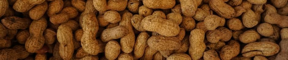 peanuts, by Tom Hermans