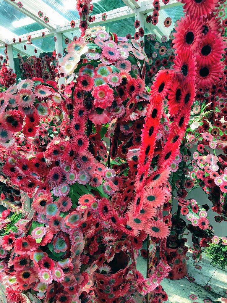 Flower Obsession, Kusama